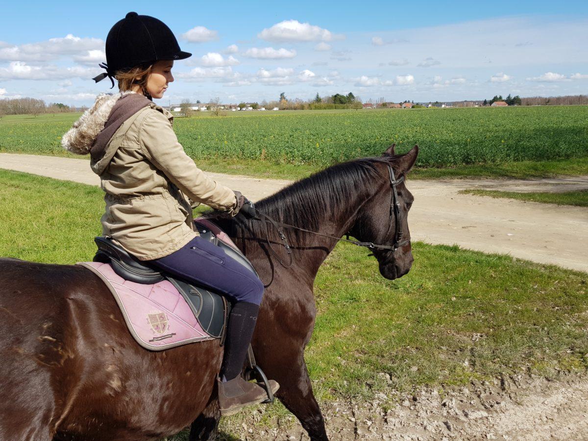 prince touraine cheval
