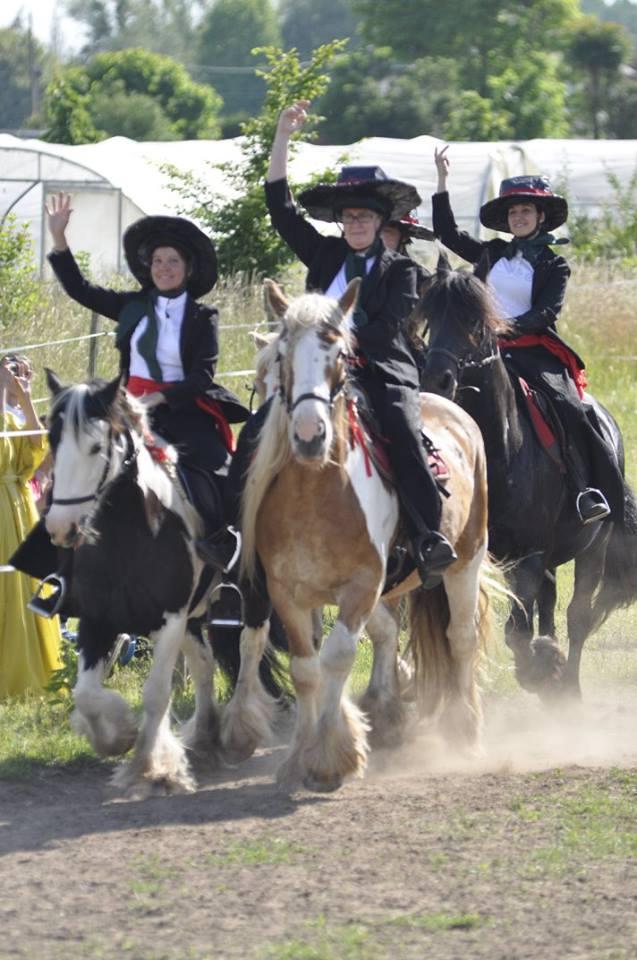 spectacle touraine cheval portugais