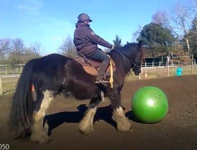 foot a cheval touraine