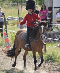 cookie touraine cheval