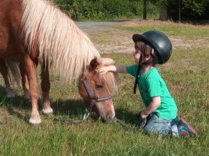 anniversaire poney touraine cheval