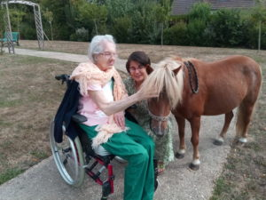 mediation animale touraine cheval equitherapie