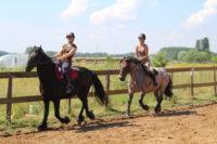 cours d'équitation collectif adultes touraine cheval