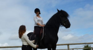 cours particulier touraine cheval