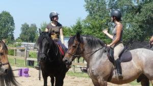cours collectif d'equitation Touraine Cheval