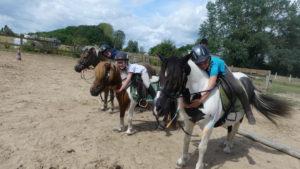 stage cours equitation enfants touraine cheval